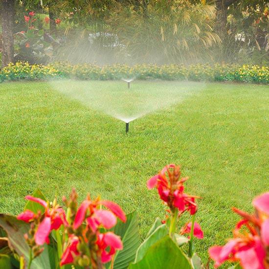 Best Time to Water My Lawn in Watertown NY – Lawn-Care Secrets